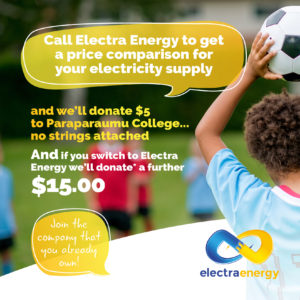 Electra Energy FB Post Paraparaumu FA (2)